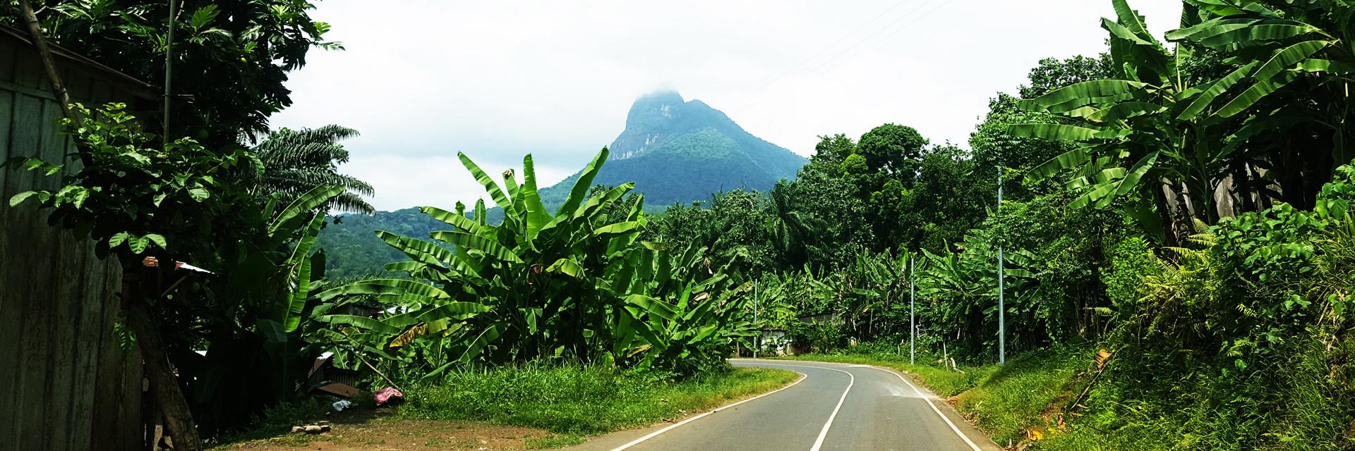 Excursion south area